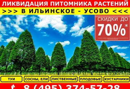 Реклама для EcoPlant